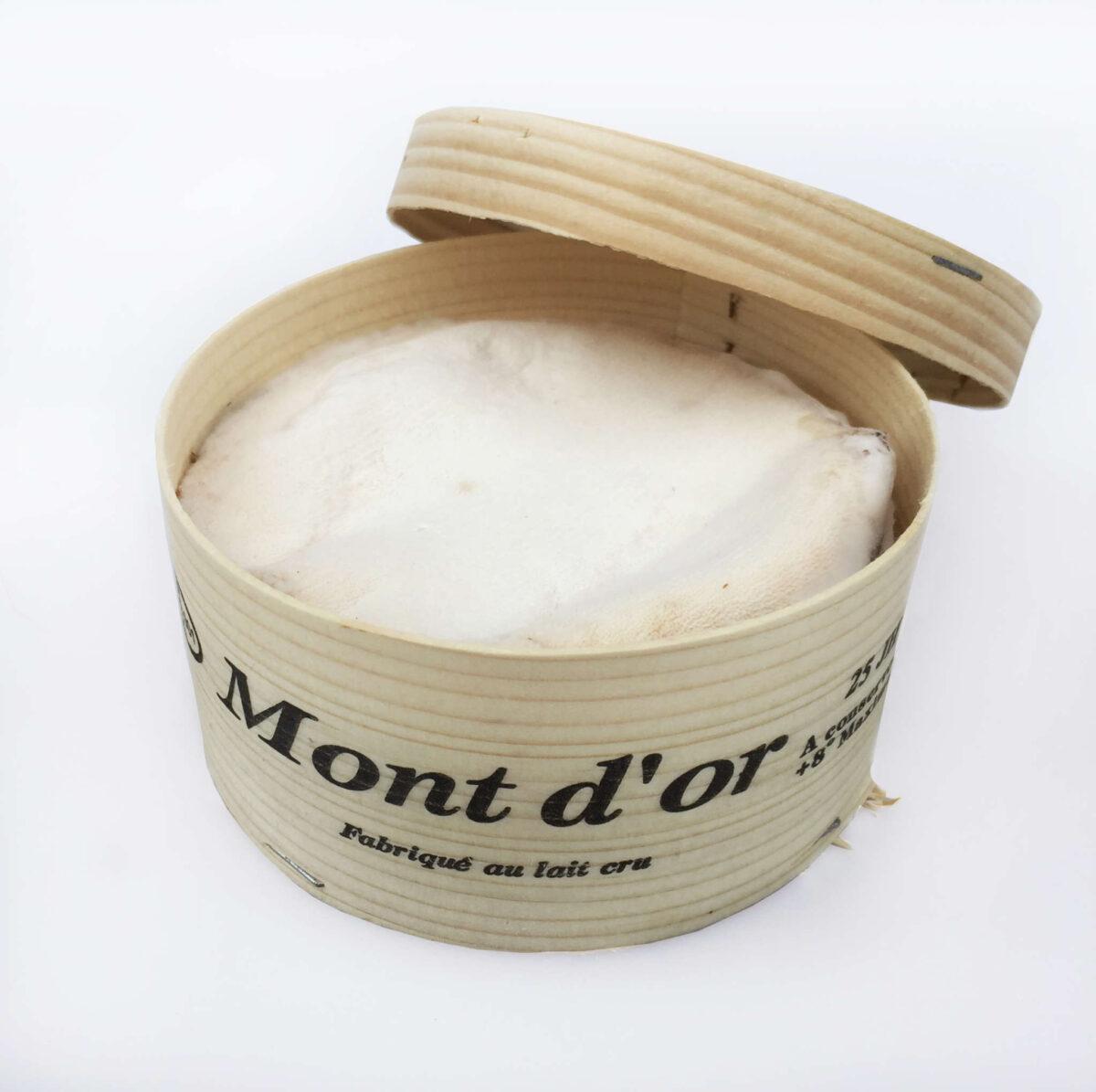 mont-dor-web2